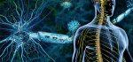 درمان بیماری ام اس با طب سنتی، درست یا غلط؟